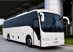 treasure-limo-fleet-mid-size-coach